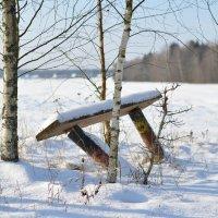Зимой :: Алёна Епичурина
