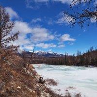 Весна в долине реки :: Анатолий Иргл