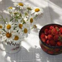 Лето :: Нина Андронова