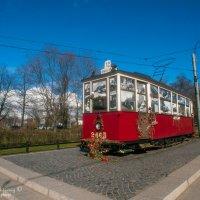 Ленинградский трамвай. :: Владимир Питерский