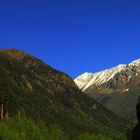 Летнее утро в ущелье Адыл-Су на высоте около 2300 м. :: Vladimir 070549