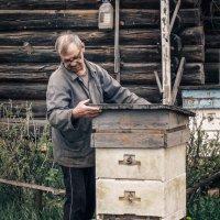 Пчеловод :: Вячеслав Васильевич Болякин