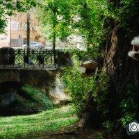 Карякинский Парк, мост с ажурной решеткой через пруд (которого нет) :: Александр Ребров