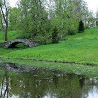 Уголок парка в Павловске! :: Валерий Подорожный