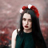 Fairy :: Елена Полянская