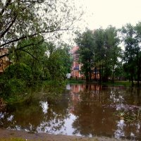 Пруд :: Алина Веремеенко