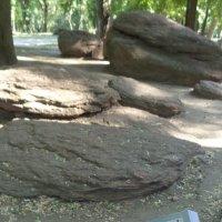 Камни - это книги миллионолетий!... :: Алекс Аро Аро