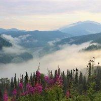 Разгулялся в долине туман :: Сергей Чиняев