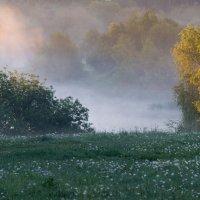Синий туман. :: Владимир Безбородов