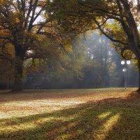 Осенний парк... :: АндрЭо ПапандрЭо