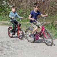 Юные велосипедисты :: Сергей Тарабара