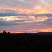 Нежность заката... :: Алена