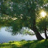 Ко сну готовится река... :: Лесо-Вед (Баранов)