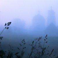 Утро туманное :: Сергей Козинцев