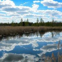 Зеркальные облака :: Милешкин Владимир Алексеевич