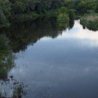 Зеркало реки :: Валерий Лазарев