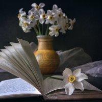 Книга и цветы :: Галина Galyazlatotsvet