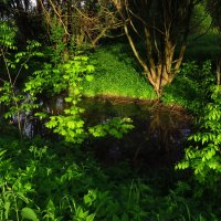 Где свет, там и тени :: Андрей Лукьянов