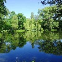 Уголок парка в утренних красках :: Маргарита Батырева