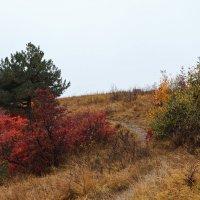 Осень в горах :: Сергей Кокотчиков