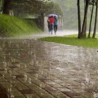 Дождь.... :: ФотоЛюбка *