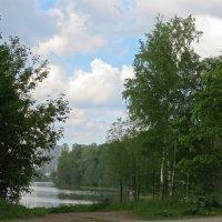 Берег озера :: Вера Щукина
