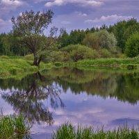 Озеро 2 :: Андрей Дворников
