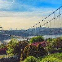 Мост Фатиха султана Мехмета через Босфор :: Ирина Лепнёва