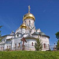 Саввино-Сторожевский монастырь. Рождественский собор. :: Nikolay Ya.......