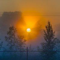 прохладное, туманное утро... :: Алексей Бортновский