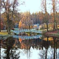 Горбатый мостик. :: Нина Бурченкова.
