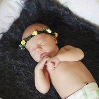 Малышка :: Виктория Налобина
