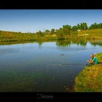 Лето в деревне.. :: Сергей Винтовкин