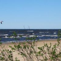 Финский залив, Нарва-Йыэсуу, Эстония :: veera (veerra)