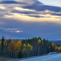 Дорога домой. :: kolin marsh