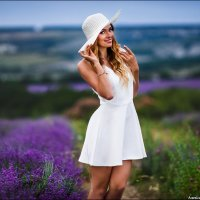 Лаванда в Крыму уже цветет! :: Алексей Латыш