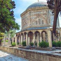 Ирисы на старо-османском кладбище и мавзолей султана Сулеймана :: Ирина Лепнёва