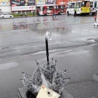 Дождь прошёл, умчались тучи.... :: Виктор Никитенко