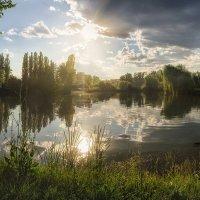 Жаркое летнее солнце :: Лидия Цапко