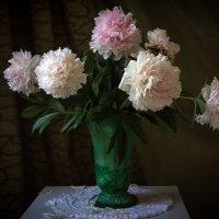 Люблю июнь, когда цветут пионы...!!! :: Ольга
