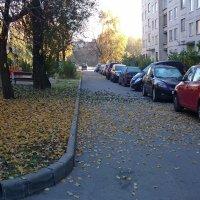 Листопад в городе :: Александр Рябчиков