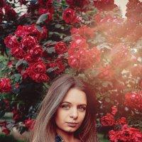 Фотосессия в Розах :: Павел Тимофеев