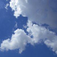И снова облака плывут по небосводу :: Tarka