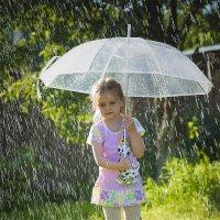 дождливое лето... :: Татьяна Полянская