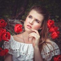 Красные тюльпаны :: Юлианна Гарден