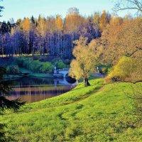 На солнечных холмах близ Славянки реки... :: Sergey Gordoff