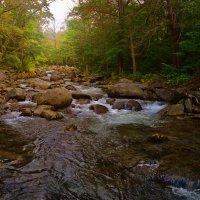 Таежная река :: Жанетта Буланкина