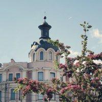 Лето на Петроградке :: Тата Казакова
