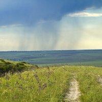Летний дождик :: Геннадий Валеев