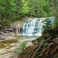 Лесной водопад. :: Svetlana Sneg